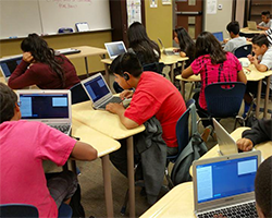 Students coding